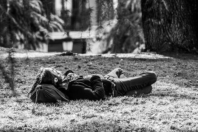 vandrák v trávě