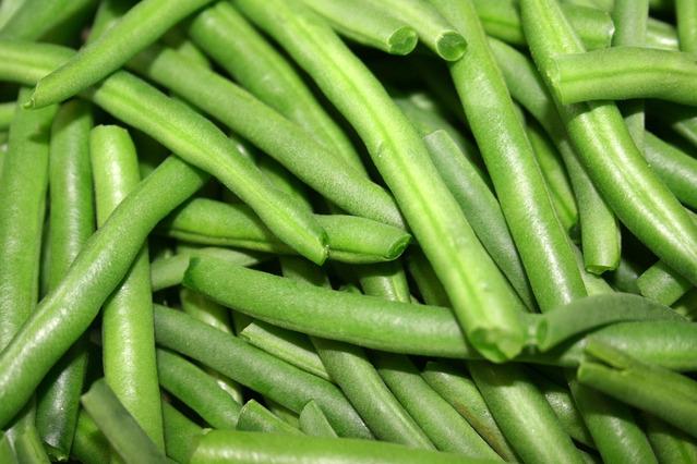 zelené fazolky
