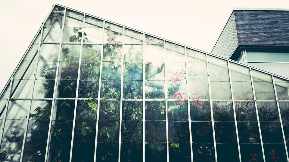 stěna skleníku
